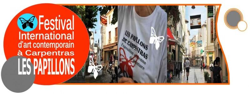 Festival Les Papillons : 22 Juin - 31 Août 2013