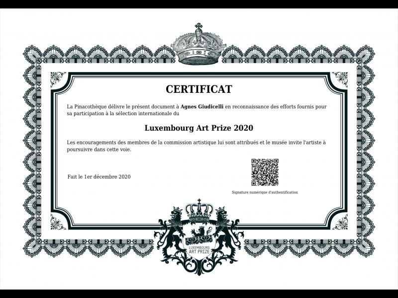 Participation à la selection du Luxembourg Art Prize 2020